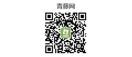 青藤网450.png